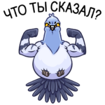 Голубь Михаил: cтикер №6