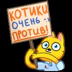Классный Кот: cтикер №28