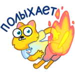 Классный Кот: cтикер №35