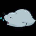 Соня (морской котик): cтикер №2