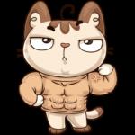 Котик: cтикер №24