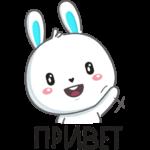 Кролик: cтикер №1