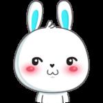 Кролик: cтикер №13