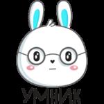 Кролик: cтикер №26