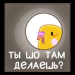 Попуги: cтикер №25