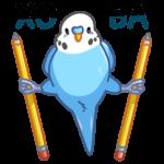 Попуги: cтикер №41