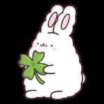 Кролик Супчик белый: cтикер №41